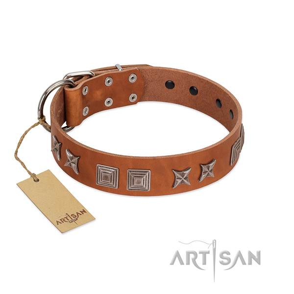 Genuine leather dog collar with top notch decorations created canine