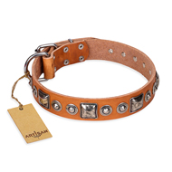 """Era of Future"" FDT Artisan Handcrafted Tan Leather Amstaff Collar with Decorations"