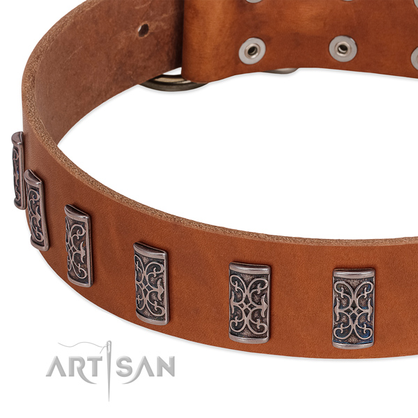 Best quality full grain natural leather dog collar handmade for your four-legged friend