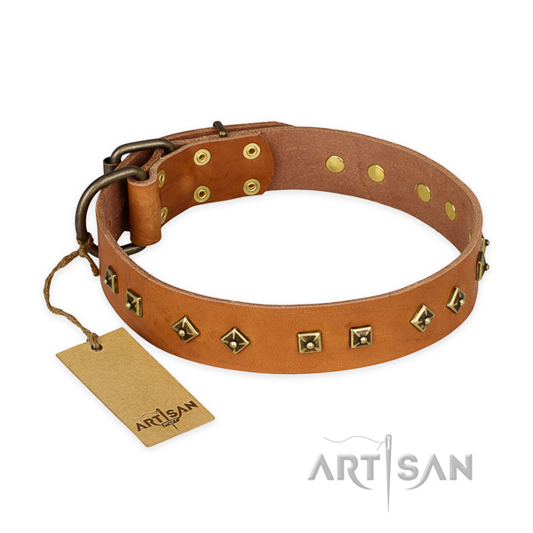 Stylish full grain natural leather dog collar with rust resistant hardware