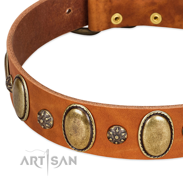 Easy wearing soft leather dog collar