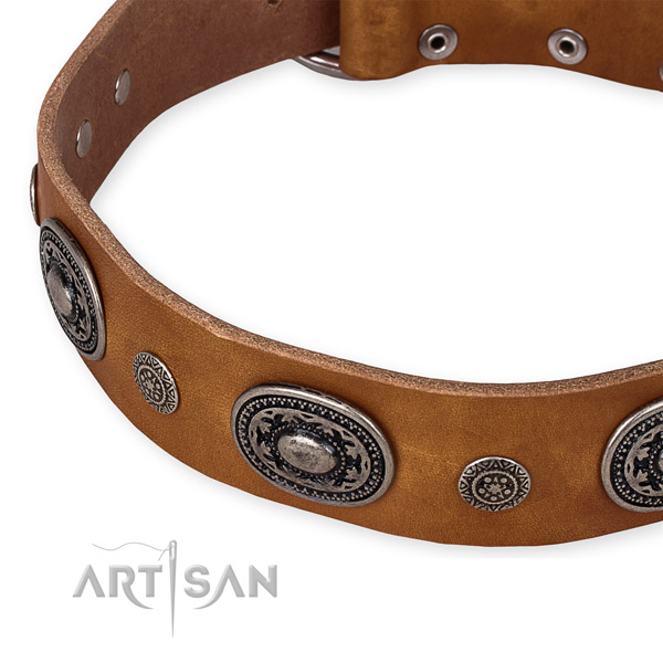 Quality full grain leather dog collar crafted for your stylish doggie