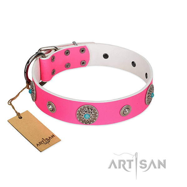 High quality leather dog collar created for your canine