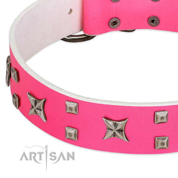 Significant genuine leather collar for your canine walking in style