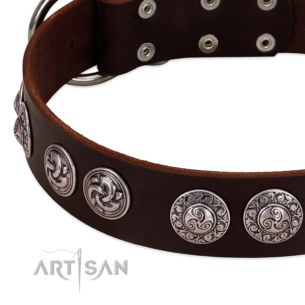 Incredible full grain genuine leather collar for your canine stylish walks