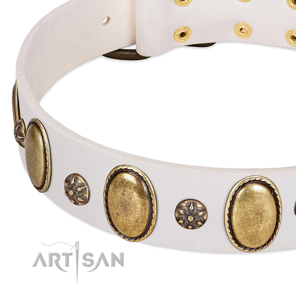 Easy wearing top notch leather dog collar with embellishments