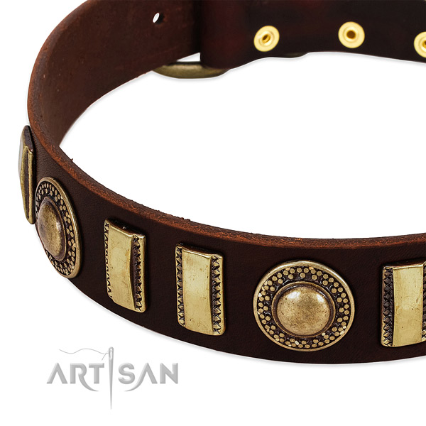 Top notch full grain leather dog collar with reliable fittings
