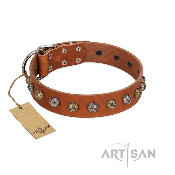 Corrosion proof fittings on extraordinary full grain leather dog collar