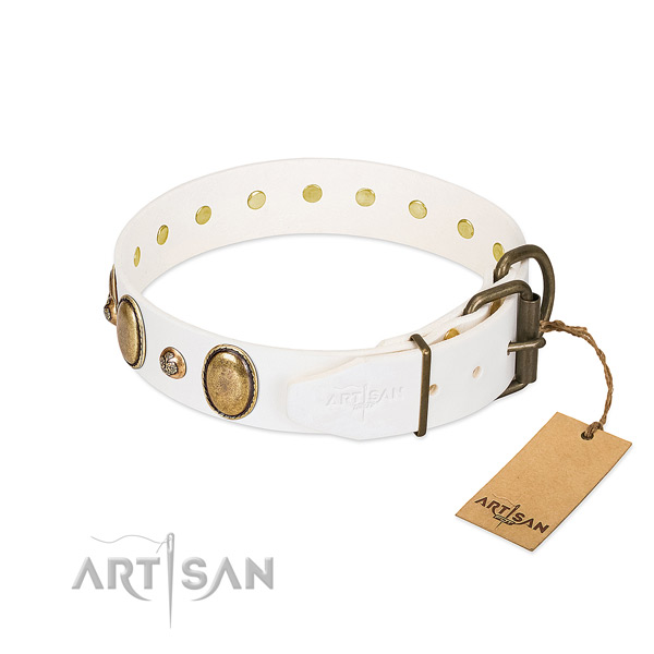 Daily use leather dog collar