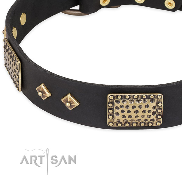 Corrosion proof adornments on full grain natural leather dog collar for your canine