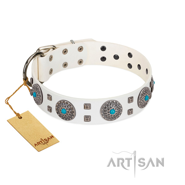 Comfy wearing full grain genuine leather dog collar with exceptional embellishments