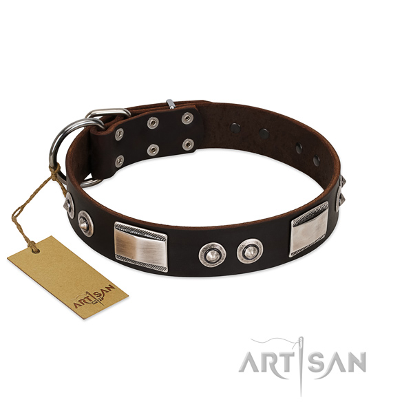 Easy wearing full grain natural leather collar with decorations for your dog