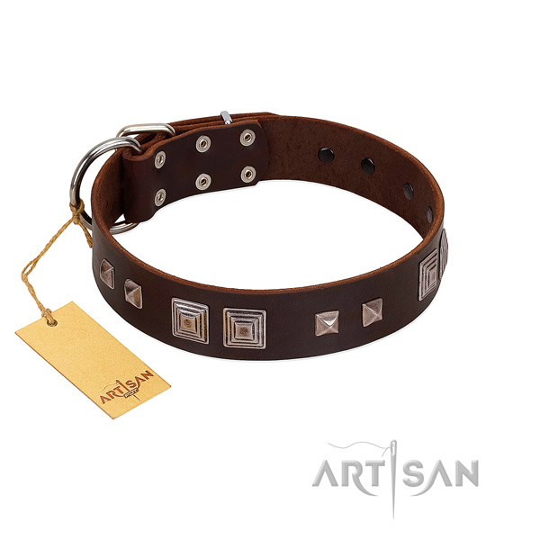 Corrosion proof buckle on full grain leather dog collar for comfy wearing
