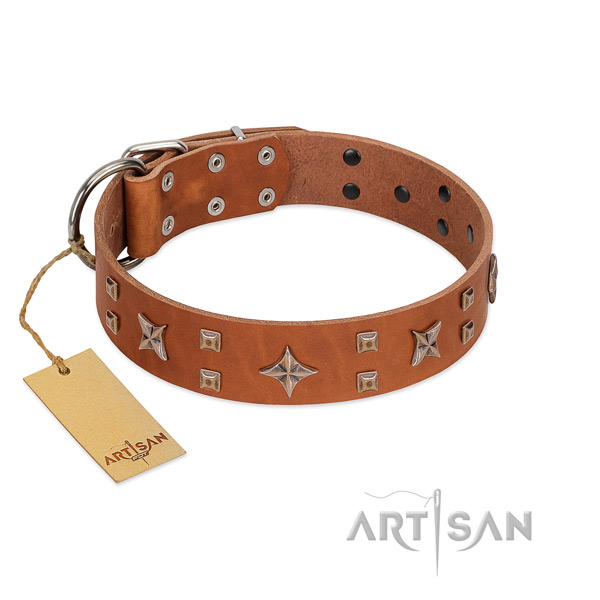 Stylish walking natural leather dog collar with inimitable decorations