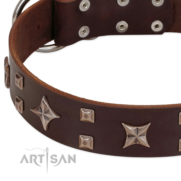 Rust resistant fittings on genuine leather collar for fancy walking your doggie