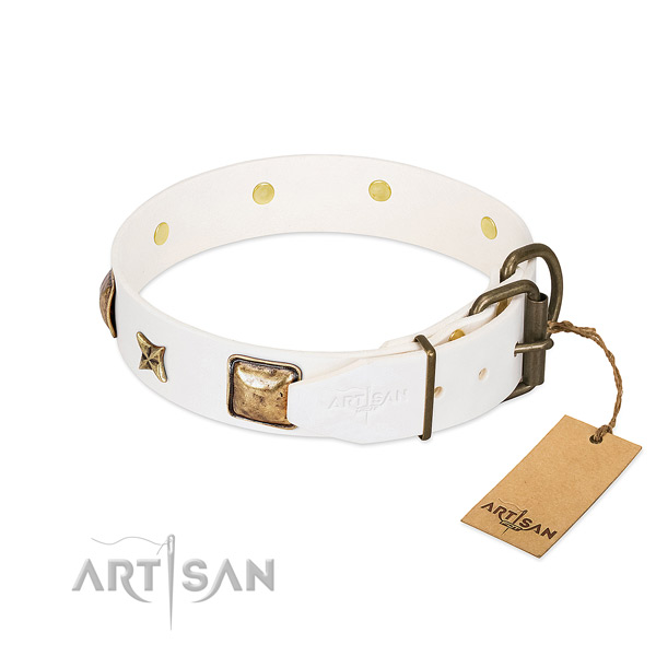 Full grain genuine leather dog collar with reliable buckle and embellishments