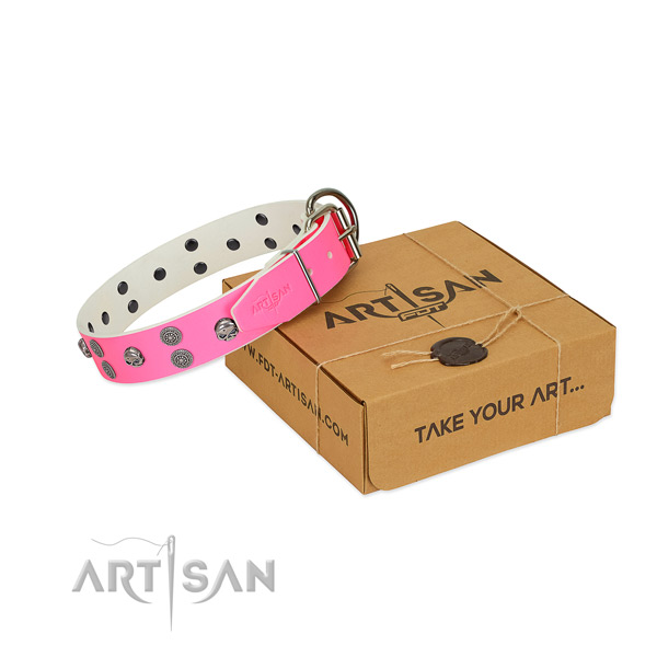 Stylish walking full grain natural leather dog collar with inimitable adornments