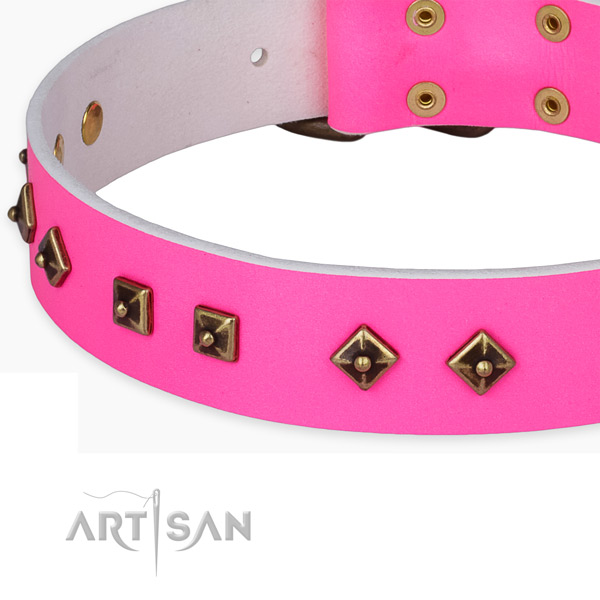 Trendy natural leather collar for your lovely doggie