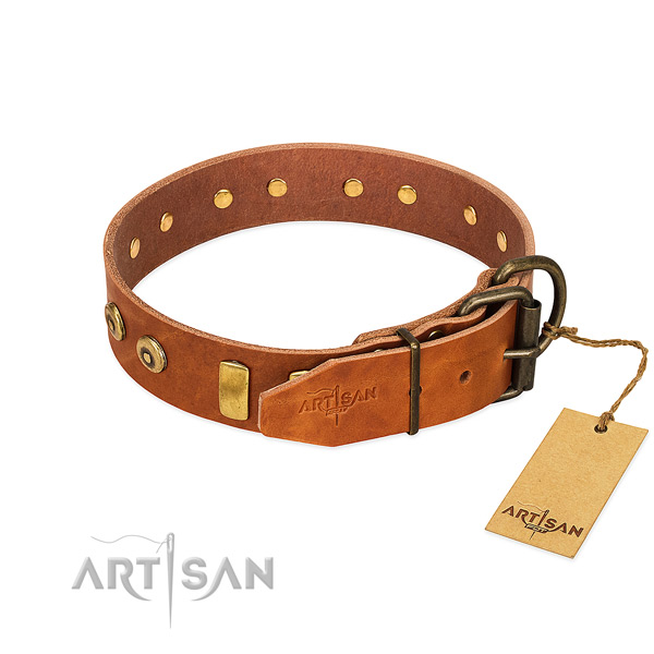 Exquisite adorned genuine leather dog collar of reliable material