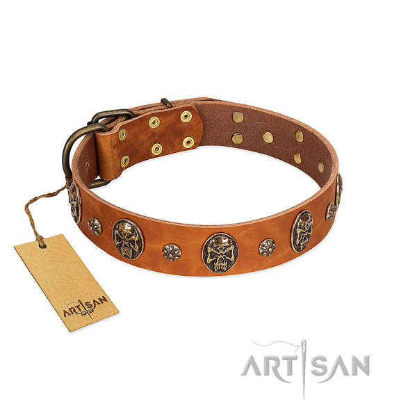 Easy adjustable genuine leather collar for your four-legged friend