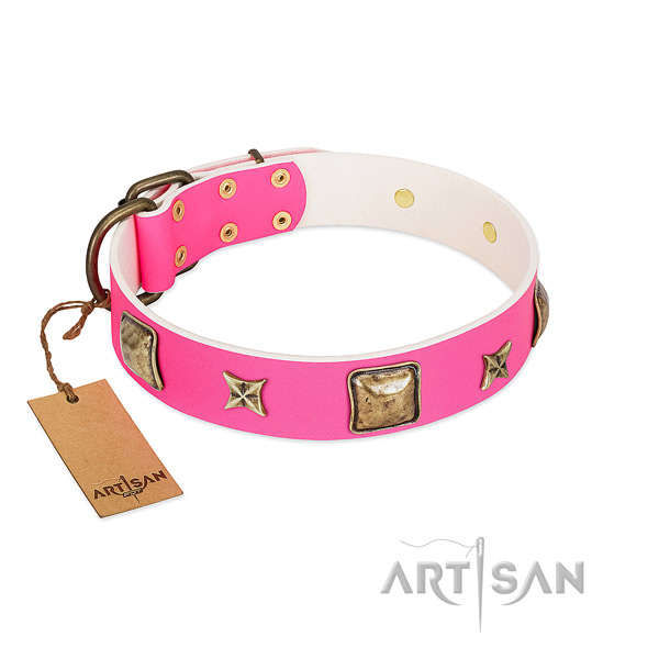 Full grain genuine leather dog collar of reliable material with impressive adornments