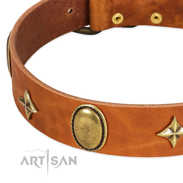 Strong full grain genuine leather dog collar with rust-proof hardware