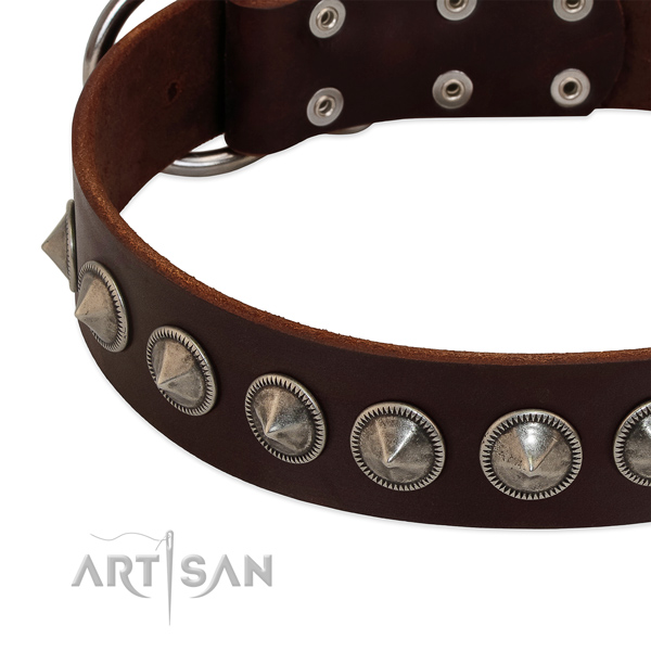 Fancy walking adorned full grain leather collar for your pet