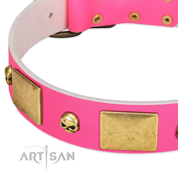 Top notch full grain leather collar with rust-proof studs for your pet