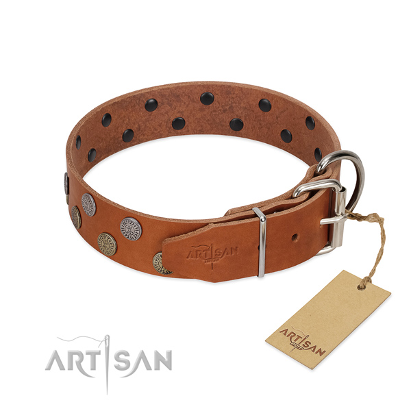 Strong traditional buckle on full grain genuine leather dog collar for comfortable wearing