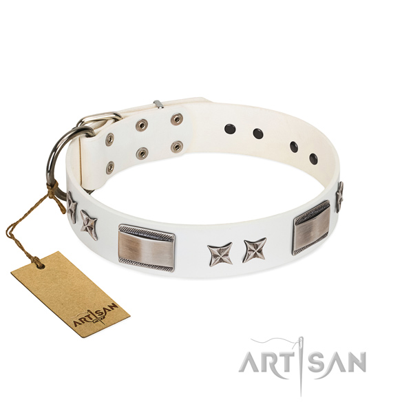 Adorned dog collar of full grain natural leather