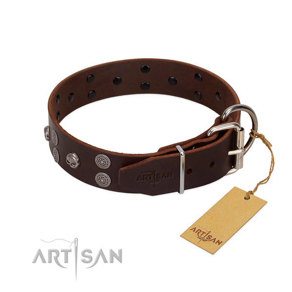 Best quality full grain natural leather dog collar with adornments for easy wearing