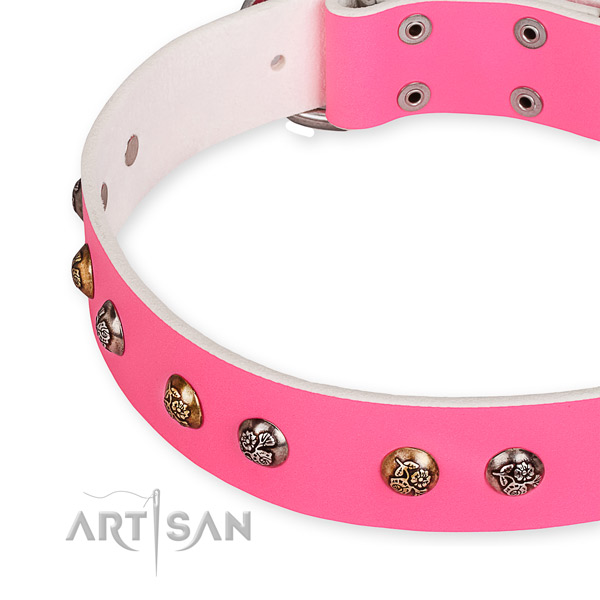 Genuine leather dog collar with designer reliable studs