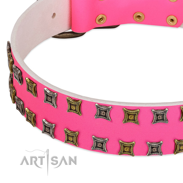 Full grain natural leather dog collar with exceptional decorations