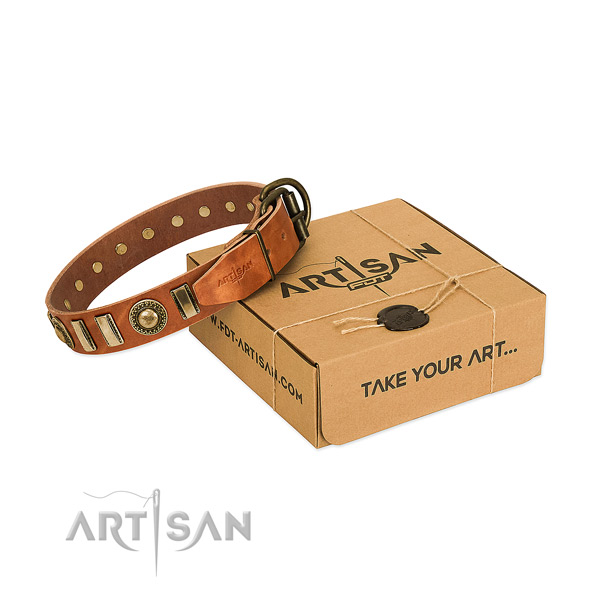 Best quality full grain natural leather dog collar with reliable traditional buckle