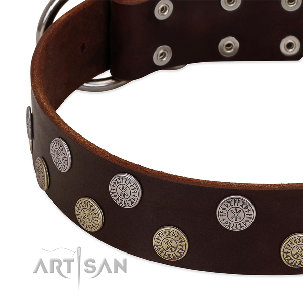 Top rate genuine leather dog collar with decorations for your handsome four-legged friend