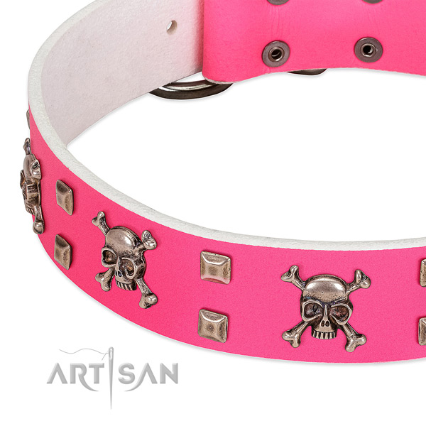 Corrosion proof embellishments on full grain leather dog collar