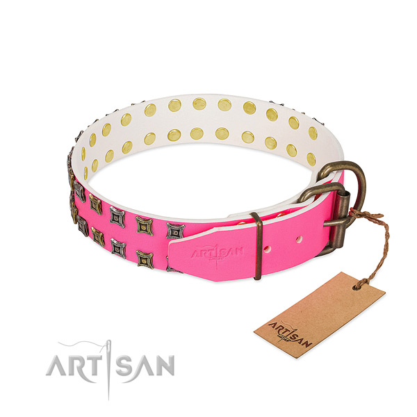 Leather collar with top notch adornments for your pet