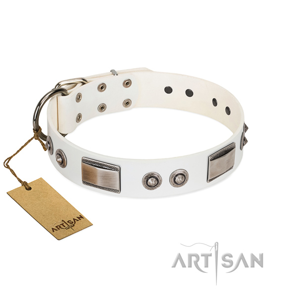 Soft to touch genuine leather collar with embellishments for your dog