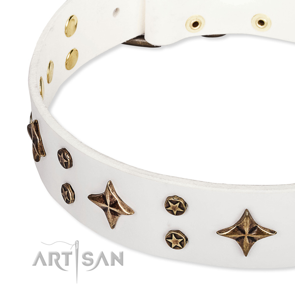 Easy wearing adorned dog collar of strong full grain natural leather