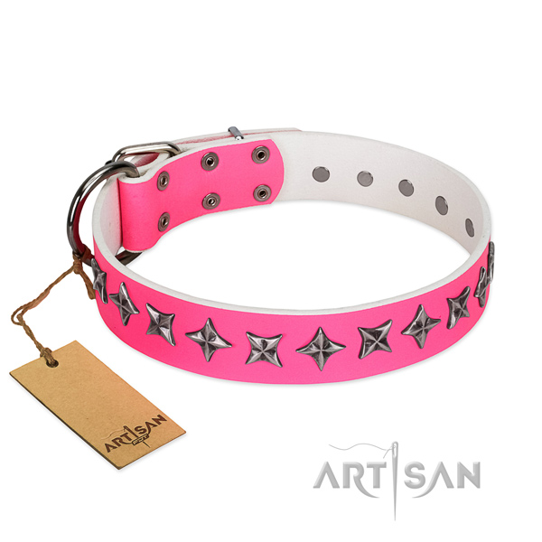 Quality full grain natural leather dog collar with remarkable embellishments