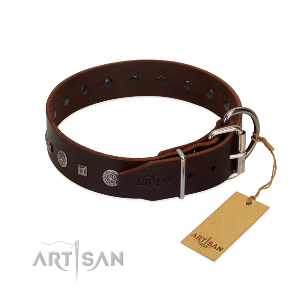 Soft natural leather collar with decorations for your four-legged friend