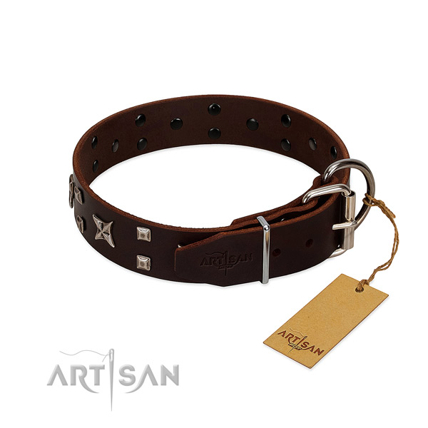 High quality full grain leather dog collar with fashionable adornments