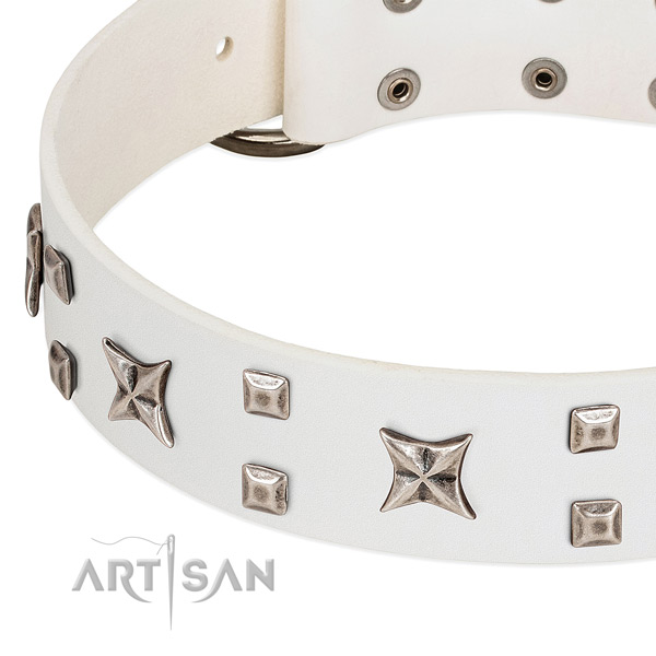 Gentle to touch natural leather dog collar with studs for stylish walking