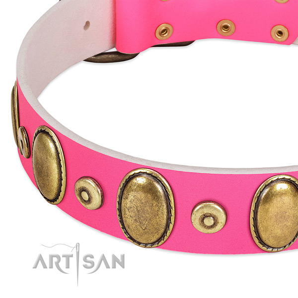 Best quality full grain genuine leather collar with rust resistant embellishments for your doggie