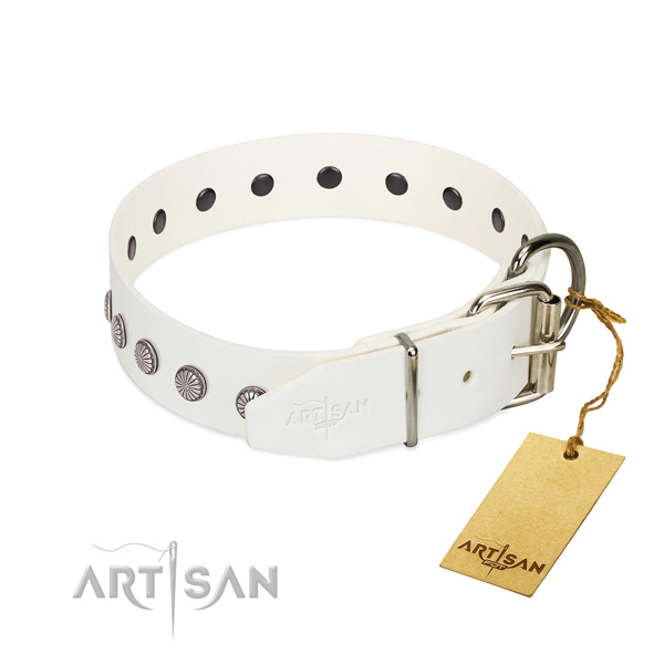 Impressive embellishments on natural leather collar for easy wearing your dog