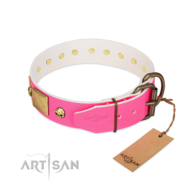Strong leather dog collar with corrosion resistant embellishments