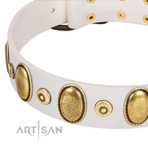 Soft to touch leather collar with rust-proof embellishments for your dog