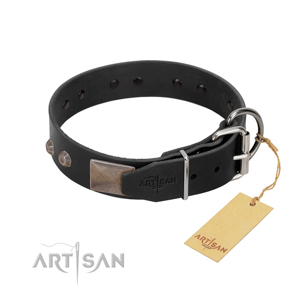 Awesome genuine leather dog collar for walking in style your doggie