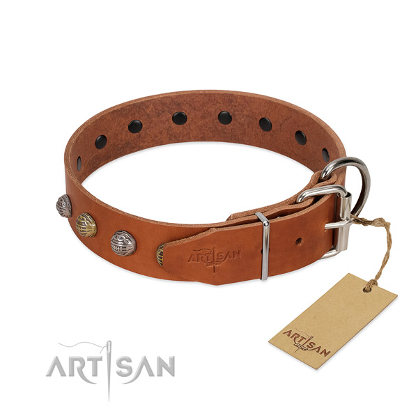 Daily use flexible full grain natural leather dog collar