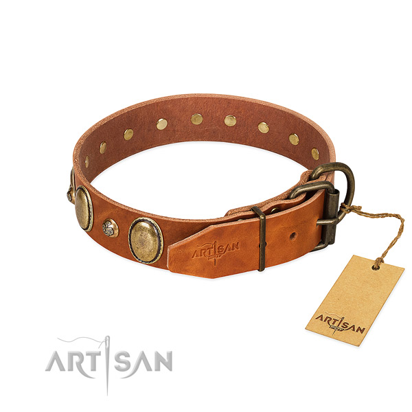 Walking genuine leather dog collar